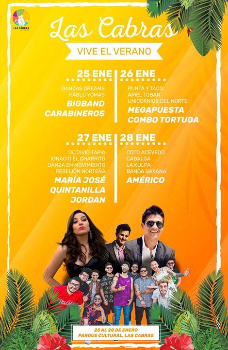 """""""Vive el verano"""": El evento para quienes van al Lago Rapel"""